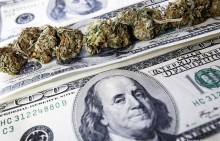 cannabis-money-620x400