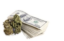 most-expensive-strain-in-the-world